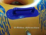 保証2年のの水公園のための二重水泳の管