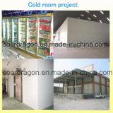 Sitio de acero galvanizado pintado de conservación en cámara frigorífica del poliuretano