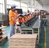 12 Fabriek van de Spreker van de Geluidsinstallatie van de Serie van de Lijn van de duim de PRO In het groot