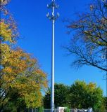 G/M marina PCS/Cellular, Galvanized Communication Tower con ISO Certified (MZ-CT)