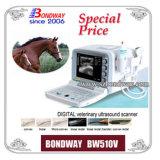 診断装置Bw510Vデジタルの獣医の超音波