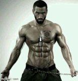 Steroid Progesteron 99% für Bodybuilding