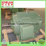 Y-Serie, die dreiphasigelektromotoren Wechselstrommotor unterbringt