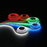 Línea doble 240 LEDs/M, tira de la UL de SMD1210 (3528) LED