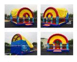 Aufblasbares Meer Funcity/aufblasbarer Custmoized Spielplatz mit Deckel/aufblasbaren Spielen