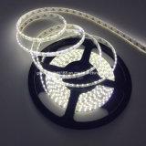 Luz de tira del LED 12 pulgadas