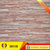 Mattonelle rustiche che costruiscono le mattonelle fuori delle mattonelle della parete (36110)