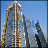 Ascenseur électrique de construction de cargaison de qualité approuvée de la CE pour la construction