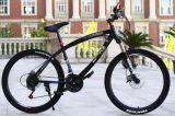 24インチ21の速度山の自転車の工場農産物中国製