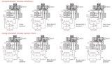 Soupape automatique de ramollissant de 2 tonnes DEL pour le double système de filtre