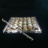 Dienbladen van het Ei van de Kwartels van pvc van de Aanbieding van de Vervaardiging van China de Duidelijke Plastic in Gaten 30PCS (plastic eidienblad)
