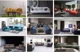 Hauptmöbel-modernes Wohnzimmer-Gewebe-Sofa eingestellt (HC513)