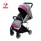 Baby-Spaziergänger für H306