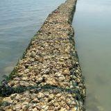 Фабрика Китая верхнего качества Горяч-Окунула гальванизированное каменное Gabion для реки с сертификатом Ce (XM-113)
