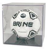 Caso di visualizzazione acrilico su ordinazione della sfera di calcio