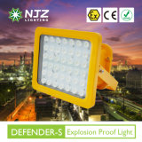 Atex Anti-Explosion 또는 폭발 방지 LED Luminaire 전 증거 점화