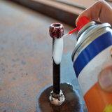 Óleo de lubrificação do pulverizador do silicone do cuidado de carro do pulverizador do lubrificante do silicone