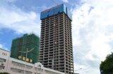 Vertrauenswürdiger Gebäude-Turmkran des Aufbau-Qtz160 (TC7013-10)