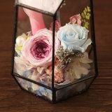 Fiore naturale conservato di 100% Rosa per il regalo di compleanno