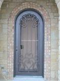 Дверь одинарного ввода хорошего утюга цены изготовленный на заказ для сада