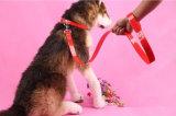 Руководство способа собаки продуктов любимчика (L107)