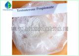 테스토스테론 Propionate, 시험 Propionate 분말, Enate 시험 버팀대 Sustanon 250