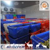Комната холодильных установок доставки с обслуживанием гостиницы для овощей