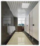 Parede de toalete de núcleo fenólico sólido de alta qualidade para o banheiro do aeroporto