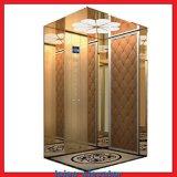 Miroir en acier inoxydable Eau-forte Ascenseur à domicile / Ascenseur