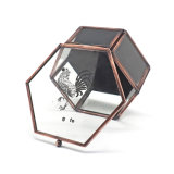 Cassa di vetro squisita nera Jb-1079 di memoria dei monili della casella di Handmde