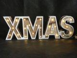 Xmasのクリスマスの装飾LEDライト