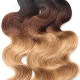 Cabelo brasileiro de Ombre do cabelo humano de Remy do Virgin da qualidade superior