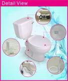 Système en céramique de gicleur avec la toilette en deux pièces de taille de portée de couleur faite sur commande d'os