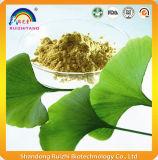 Extrait pure de plantes naturelles extrait de Ginko Biloba