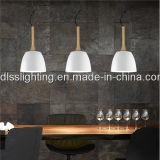 Lâmpadas creativas simples da suspensão do estilo europeu para a decoração do restaurante