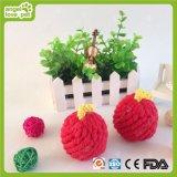 Cuerda de algodón de Apple juguetes para mascotas Chew Producto