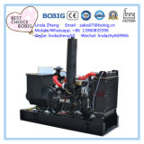 Yangdong 엔진으로 20kw 25kVA 전기 발전기 열리는 침묵하는 비바람에 견디게 한다