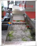 Tipo máquina de la burbuja Wa-2000 de la limpieza de la fruta y verdura que se lava