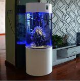 De ronde Tank van Vissen om Aquarium Actylic