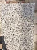 Granito Polished naturale del fiore bianco di vendita calda per la stazione ferroviaria