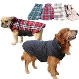 Il cane del commercio all'ingrosso del cotone dei prodotti dell'animale domestico copre l'inverno