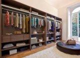 Kabinetten van de Kast van de Garderobe van het huis Walk-in