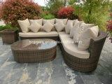 5 parti di fiore del POT del sofà di conversazione della mobilia stabilita del rattan