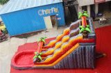 2017 New Design Summer Water Slide Water Slide com piscina