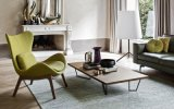 Silla tapizada tela moderna de la sala de estar del ocio