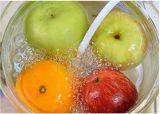 ثمرة مادّة غذائيّة تطوير أوزون مولدة