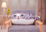 다채로운 과일 또는 고양이 모양 견면 벨벳 장식적인 베개