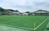 Grappe artificielle de Guangzhou, herbe sportive, herbe de football (Y50)