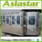 Machines van de Installatie van het Mineraalwater van het roestvrij staal de Automatische 5L