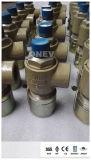 """기름을%s 3/4의 """" *1 """" NPT 끝 안전 안전 밸브"""